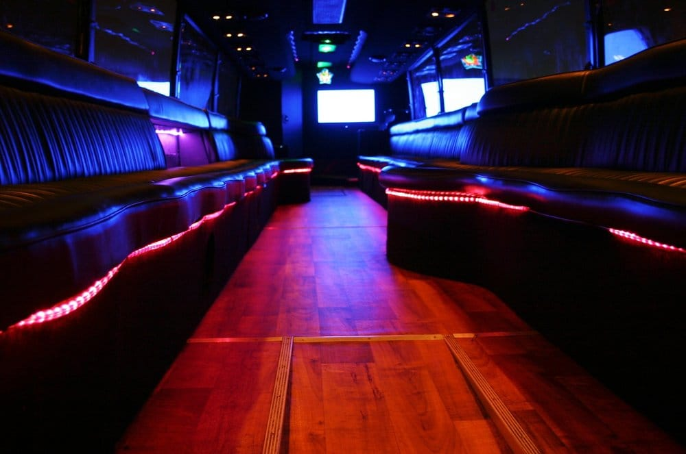 48 passenger party bus